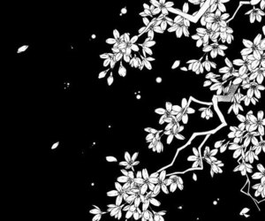 manga, black and white, and flowers image