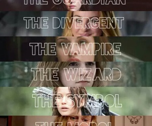 divergent, harry potter, and books image