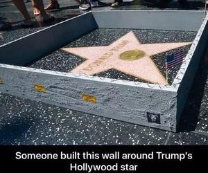 funny, donald trump, and hilarious image