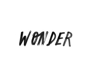 text, quote, and wonder image