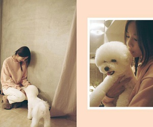 girls, kpop, and pets image