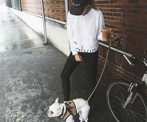 dog, fashion, and girl image