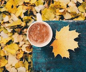 autumn, chocolate, and cacao image