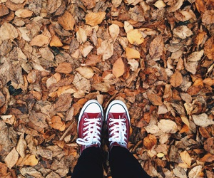 autumn, clothes, and leaves image