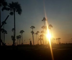 los angeles, travel, and Venice beach image