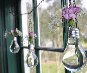 bulbs, flowers, and glass image