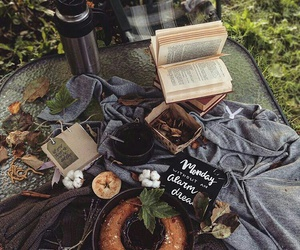autumn, book, and picnic image