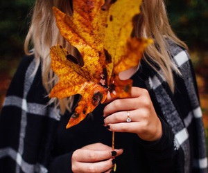 autumn, clothes, and leaf image