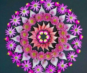 flower, mandala, and phrases image