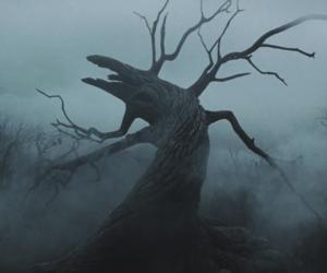sleepy hollow, tim burton, and tree image