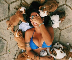 dogs, girl, and many image