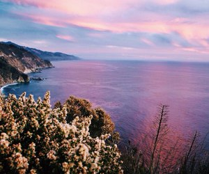 afterglow, flowers, and cliffs image