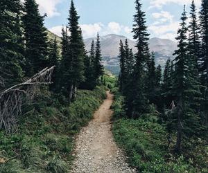 adventure, beautiful, and nature image