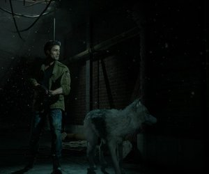 mike, wolf, and wolfy image