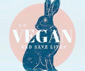 vegan, veganism, and go vegan image