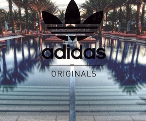 adidas, pool, and summer image