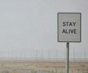 pale, stay alive, and sign image
