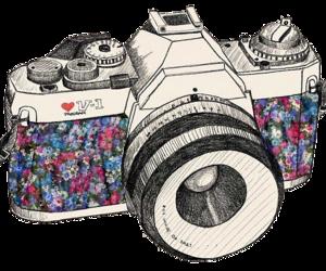 camera, vintage, and camara image