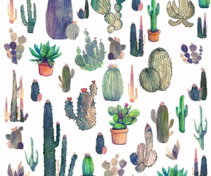 cactus, background, and pattern image