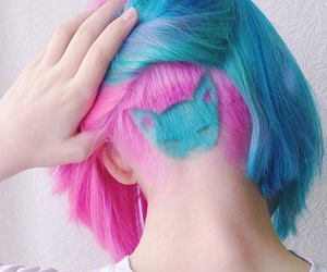 blue, hairstyle, and blue cat image