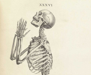 skeleton and black and white image