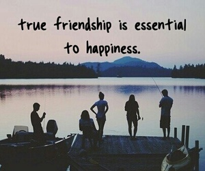 friendship, life, and essential image