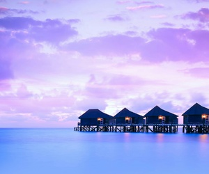 calmness, purple, and sea image