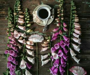 beautiful, coffee, and homedecor image