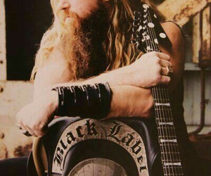 black label society, zakk wylde, and metal image