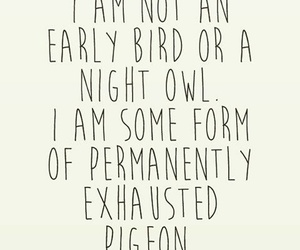 funny, night owl, and school image