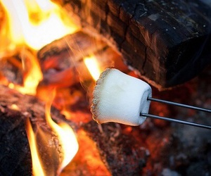 fire and marshmallow image
