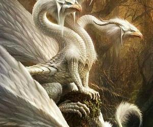 dragon white image