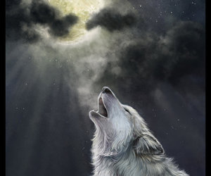creative, moon, and wolve image