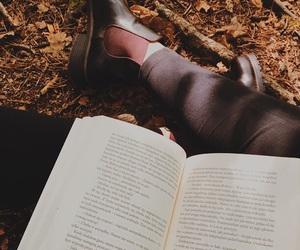 atumn, books, and fall image