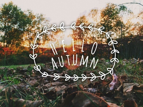 fall, hello autumn, and october image