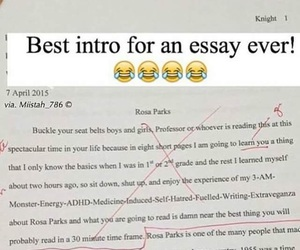 essay, funny, and intro image