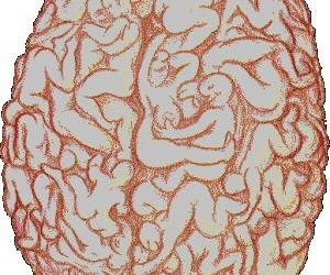aesthetic, brain, and drugs image