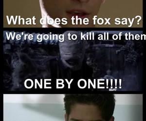 fox, funny, and meme image