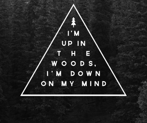 woods, quote, and mind image