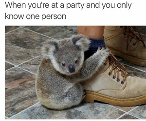 funny and party image