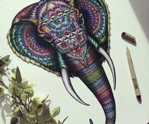 drawing, art, and elephant image