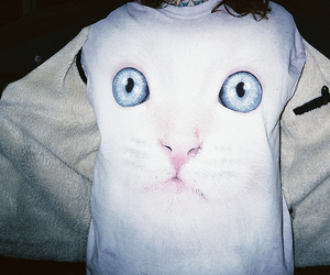 cat, vintage, and white image