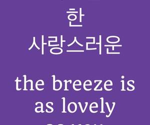 english, korean, and pretty image