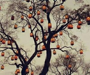 tree, light, and lantern image