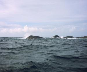 coast, nature, and norway image