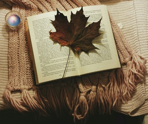 autumn, book, and leaves image