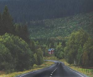 adventure, autumn, and roadtrip image