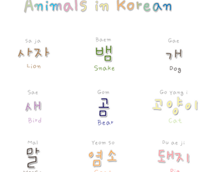 hangul, learn korean, and korea image