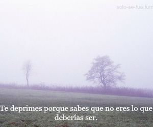frases, depression, and sad image