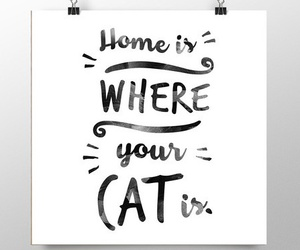 cat, girl, and home image